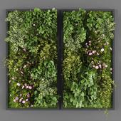 Vertical garden 020
