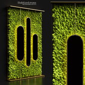 Stabilized moss and mirrors
