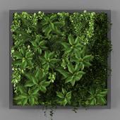 Vertical garden 022