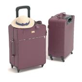 Классический чемодан Dolce&Gabbana (бордовый)