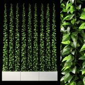 vertical garden 09