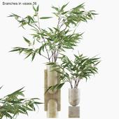 Branches in vases 36 : Eucalyptus