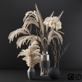 Set with dry plants