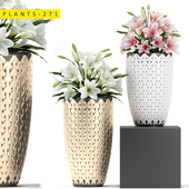 plants 271