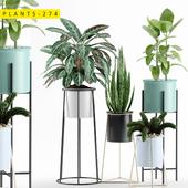plants 274