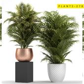 plants 278