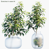 Branches in vases 44
