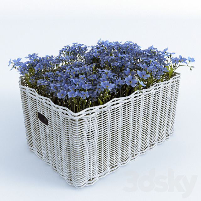 Basket with Forget-Me