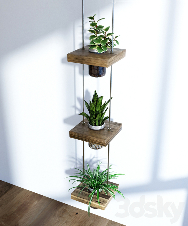 Hanging shelf with flowers