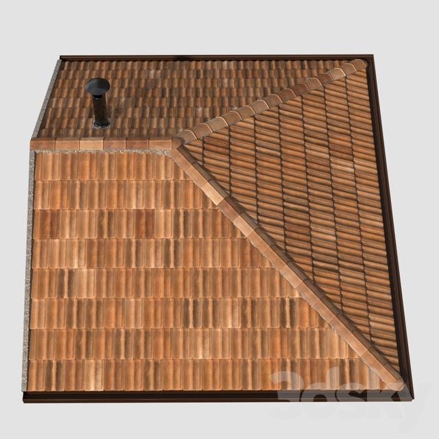French tile roof