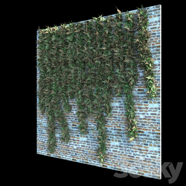 Ivy & Creepers v1.0