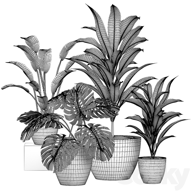 Decorative set of plants
