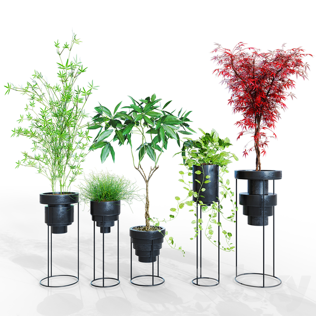 LAYERED PLANTERS by ANNA KARLIN