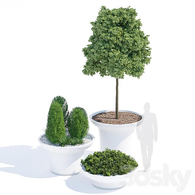 Balzac planters
