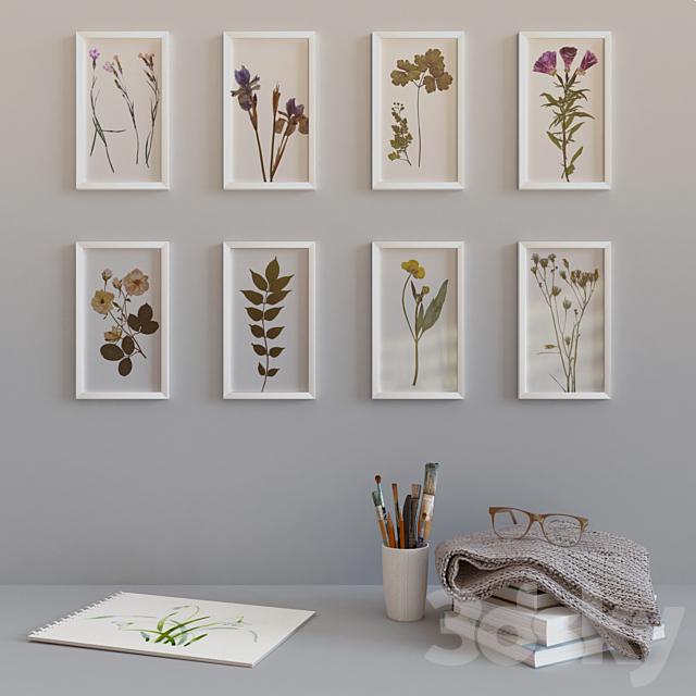 Decorative set with herbarium