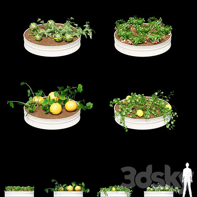 Garden | Kitchen garden.vol 2