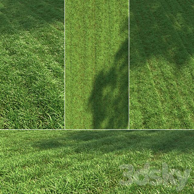 Regular grass