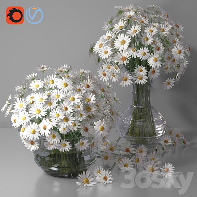Daisy / Chamomile Bouquet Vases