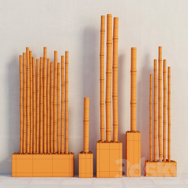 Bamboo in color boxes / Bamboo decor color box