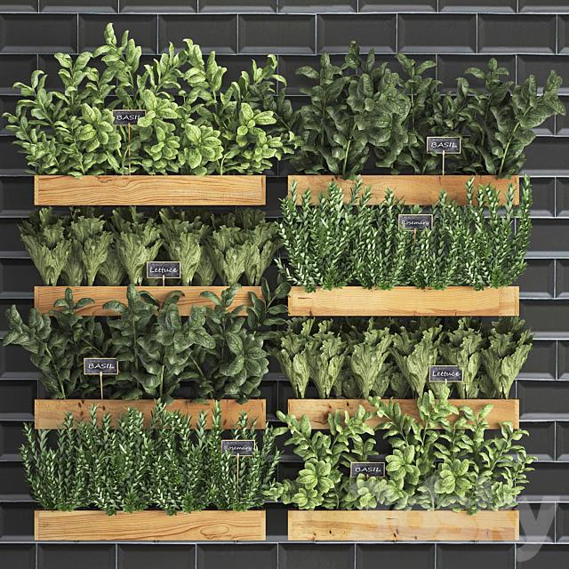 Vertical gardening. 37