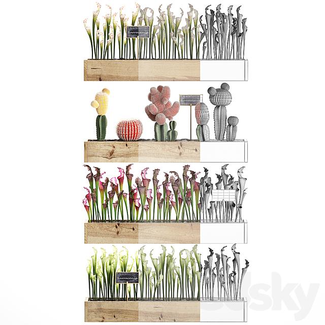 Vertical gardening. 44