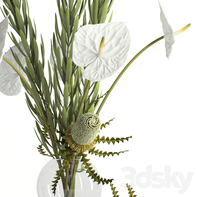 Banksia, anthurium and Leucadendron