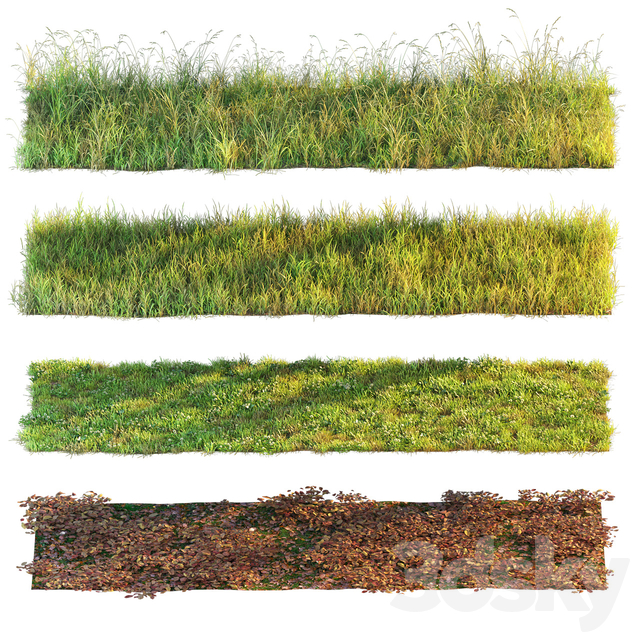 Set of grass and leaves.