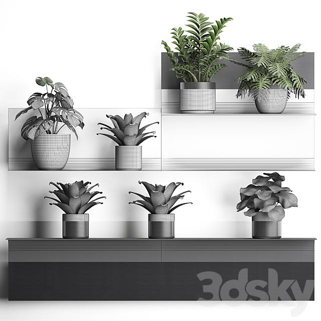 Vertical gardening. 49