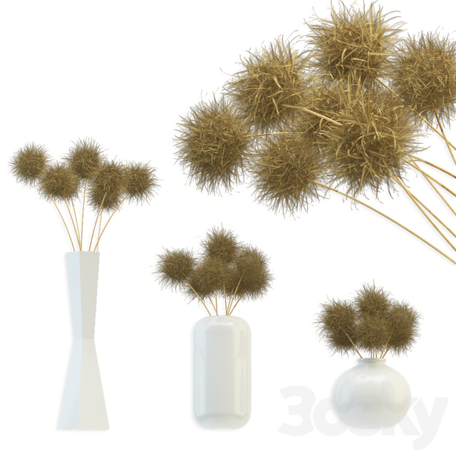 Bouquet of dried round flowers