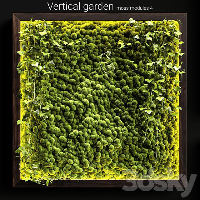 Vertical garden. Moss modules 4