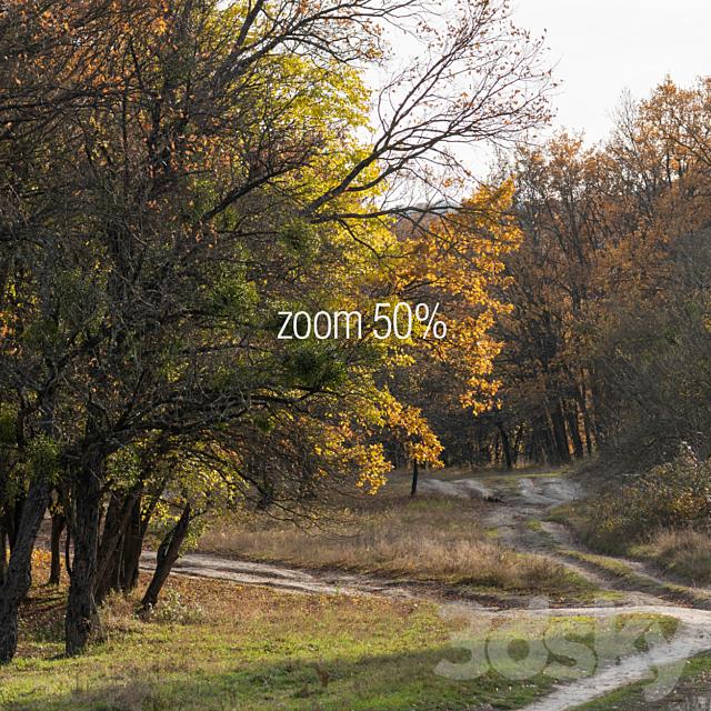 Oak Grove. 2 panoramas