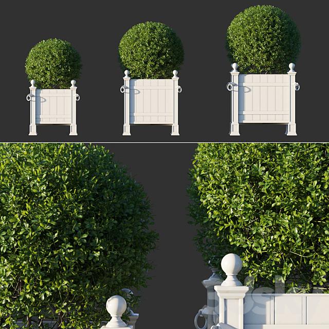 Boxwood RH Versailles Panel