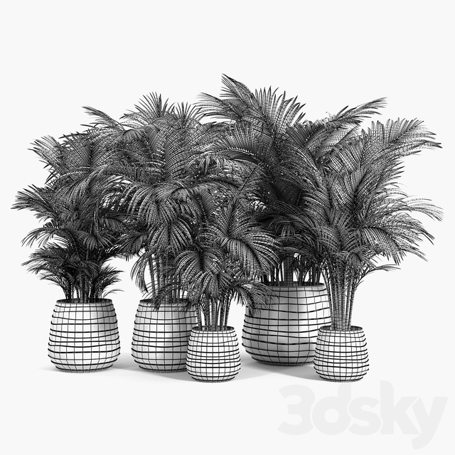 Tula Planter Collection
