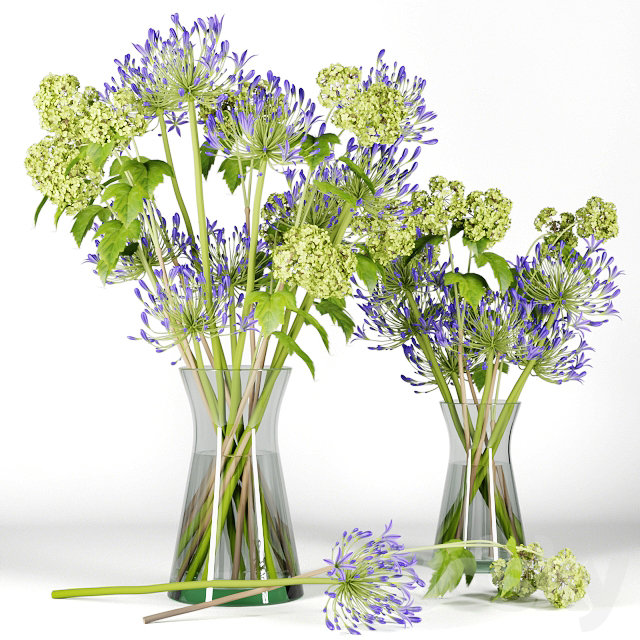 Bouquet with branches of flowering elderberry and purple inflorescences