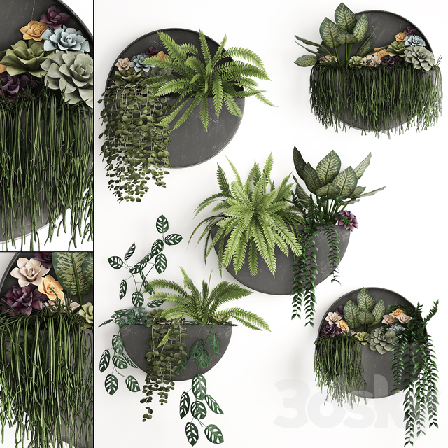 Vertical gardening. 56