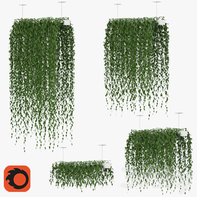 Hanging plants v1 (Corona)