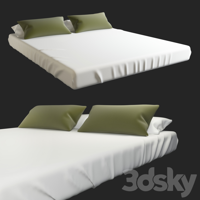 Mattress & Pillows (Bed Set)