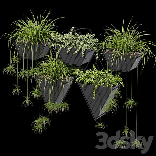 Tulan hanging planter