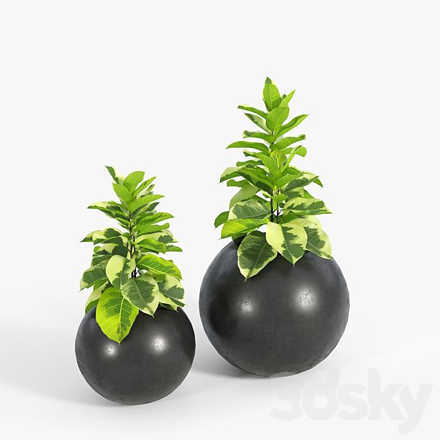 Sphere Dark Gray Planter