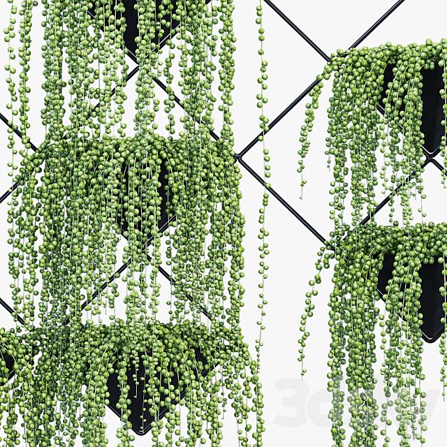 Ikebana two