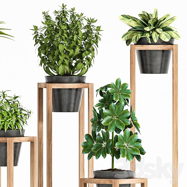 plant set 128