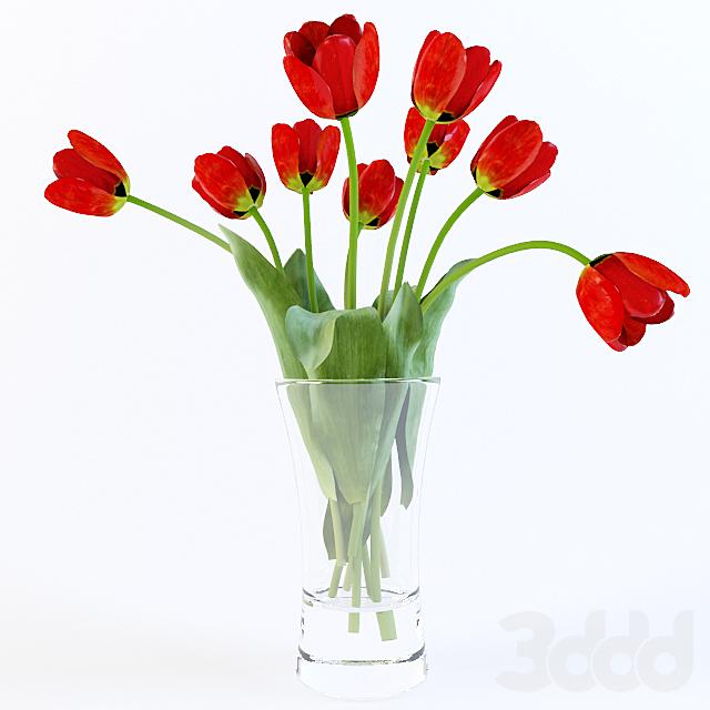Тюльпаны букет
