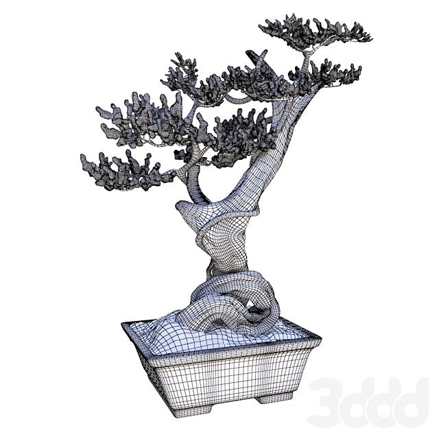 Нефритовое дерево