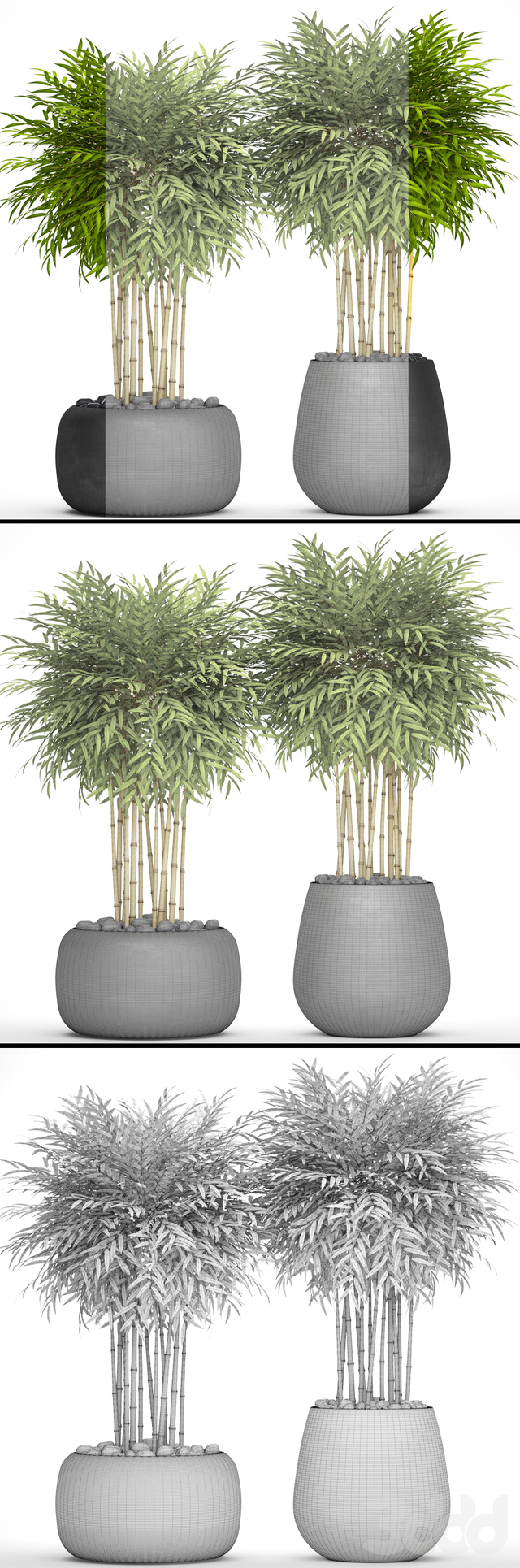 Коллекция растений в горшках 23