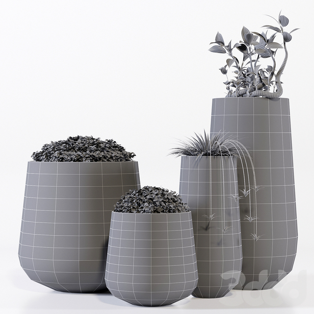 Potterypots two