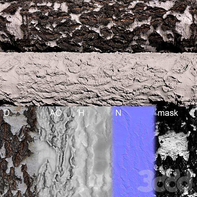 Материал коры березы (фотограмметрия)