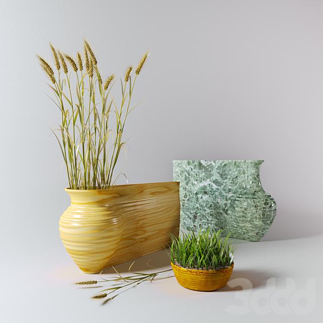 Вазы и пшеница