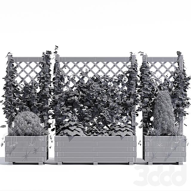 Planter with lattice
