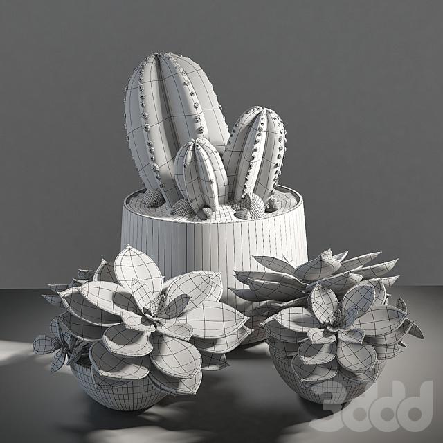 Set of plants 01