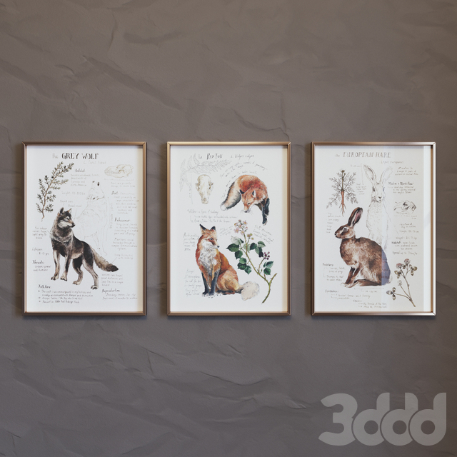 Постеры Lily Seika Jones 01 (Posters by Lily Seika Jones 01)